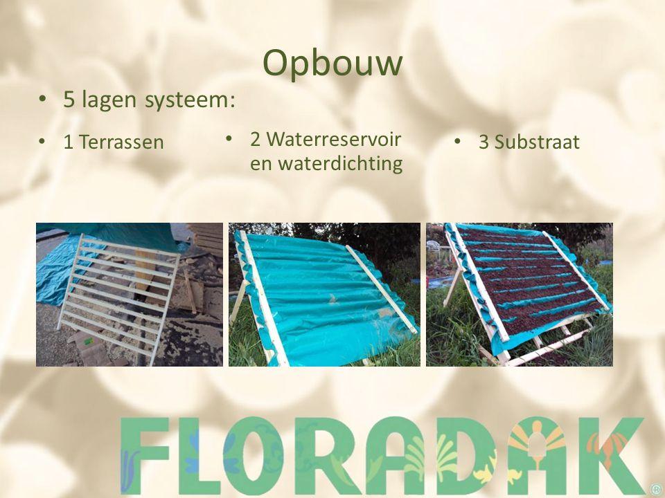 Opbouw 5 lagen systeem: 1 Terrassen 2 Waterreservoir en waterdichting 3 Substraat