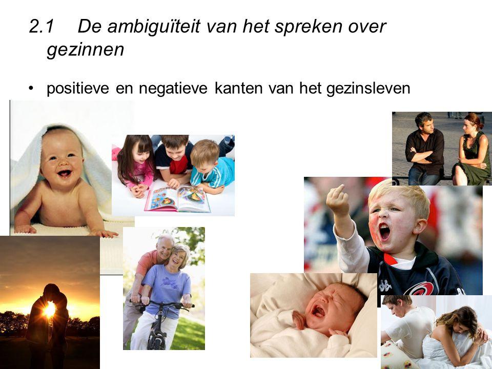 2.1De ambiguïteit van het spreken over gezinnen positieve en negatieve kanten van het gezinsleven