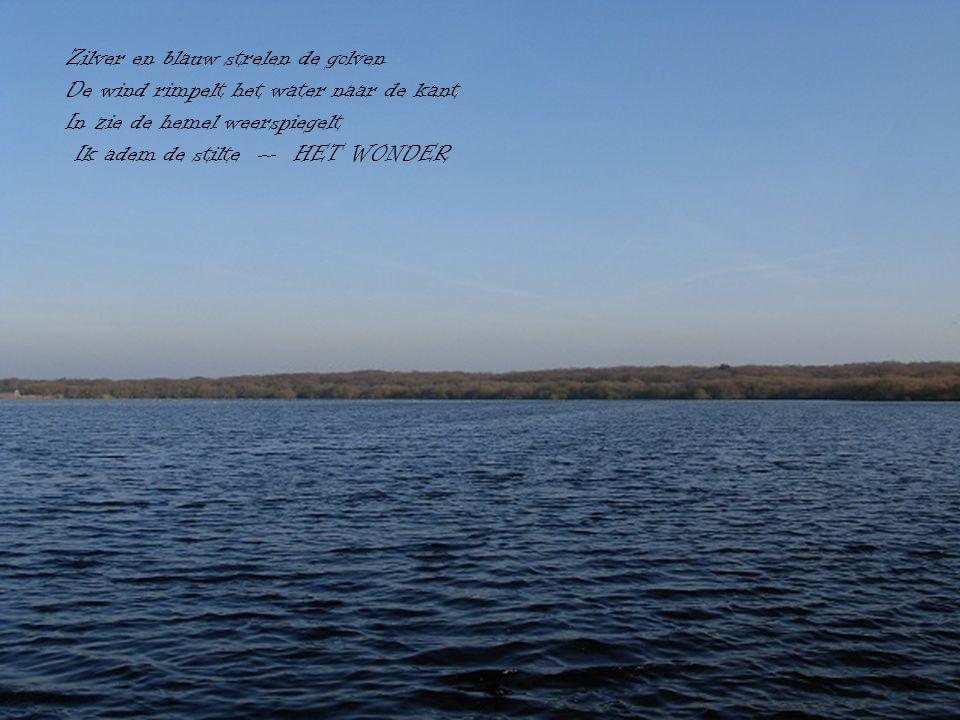Zilver en blauw strelen de golven De wind rimpelt het water naar de kant In zie de hemel weerspiegelt Ik adem de stilte -- HET WONDER