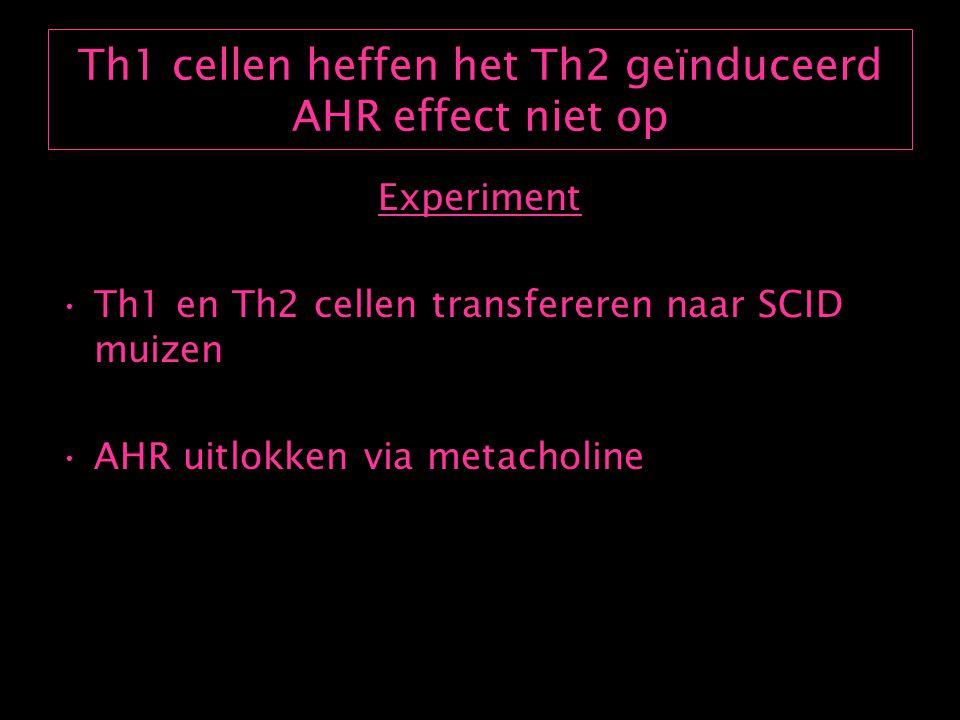 Th1 cellen heffen het Th2 geïnduceerd AHR effect niet op Experiment Th1 en Th2 cellen transfereren naar SCID muizen AHR uitlokken via metacholine
