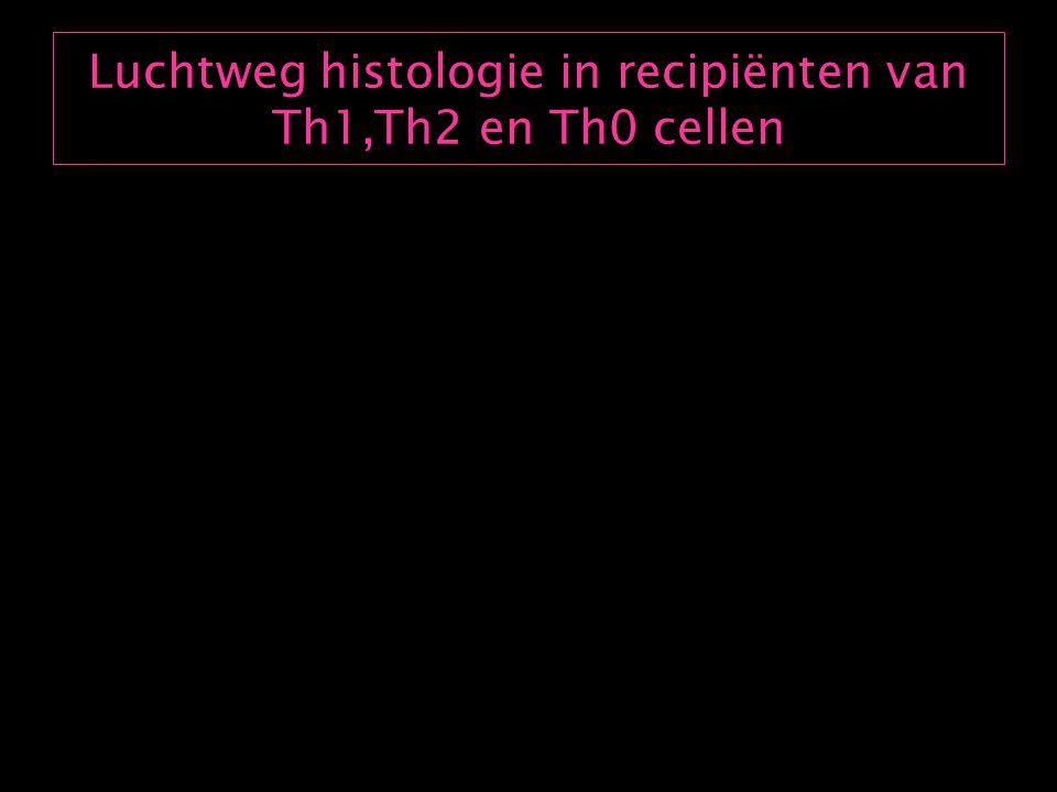 Besluit OVA specifieke Th1 cellen kunnen de Th2 geïnduceerde luchtwegontsteking niet opheffen
