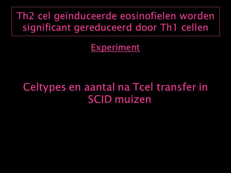 Th2 cel geïnduceerde eosinofielen worden significant gereduceerd door Th1 cellen Resultaat