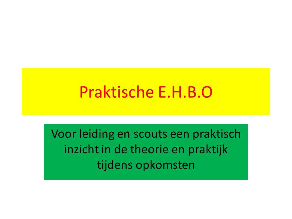 Praktische E.H.B.O Voor leiding en scouts een praktisch inzicht in de theorie en praktijk tijdens opkomsten