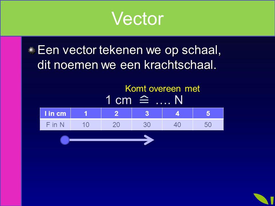 Een vector tekenen we op schaal, dit noemen we een krachtschaal. 1 cm …. N 1 cm …. N Komt overeen met Vector l in cm12345 F in N1020304050