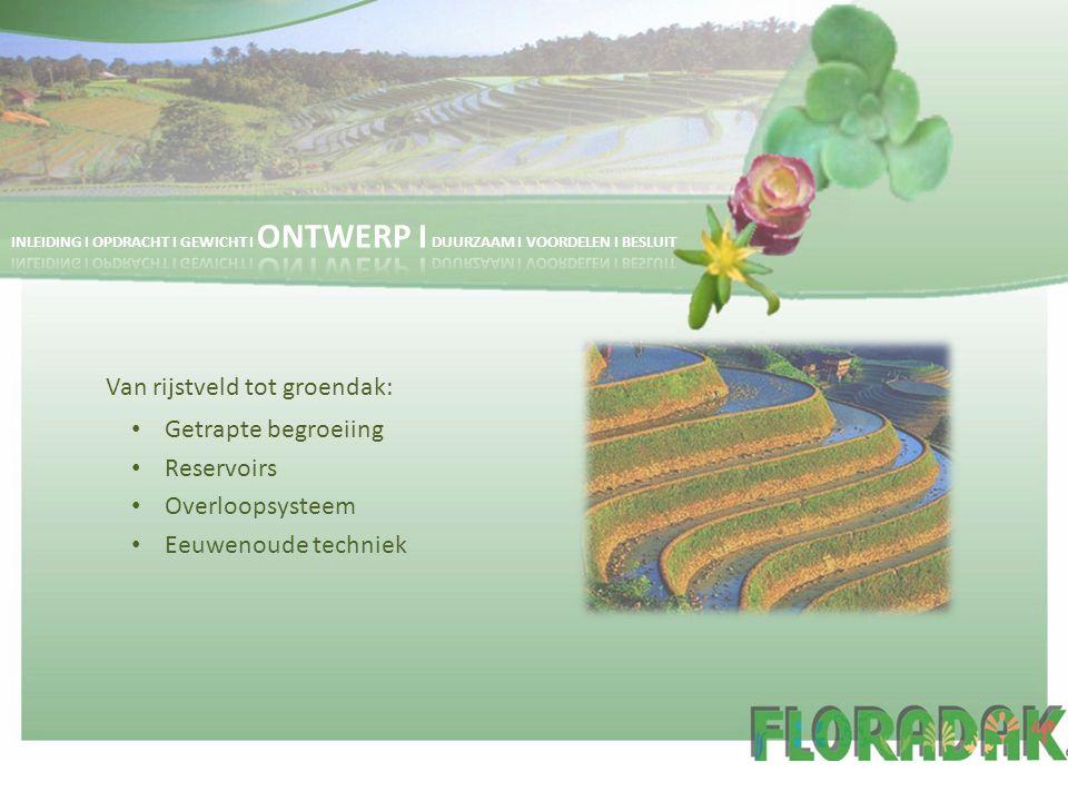 Van rijstveld tot groendak: Getrapte begroeiing Reservoirs Overloopsysteem Eeuwenoude techniek