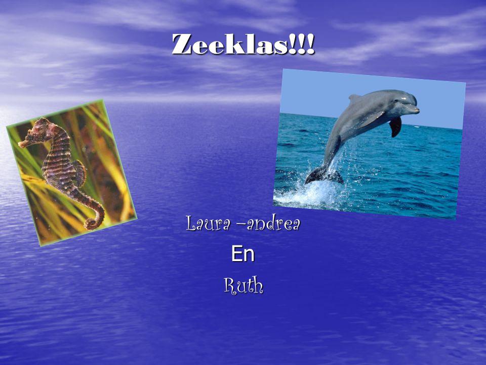 Zeeklas!!! Laura –andrea EnRuth