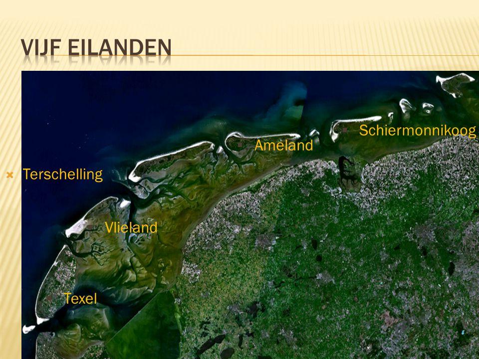 2  Terschelling  Vlieland  Texel  Ameland  Schiermonnikoog