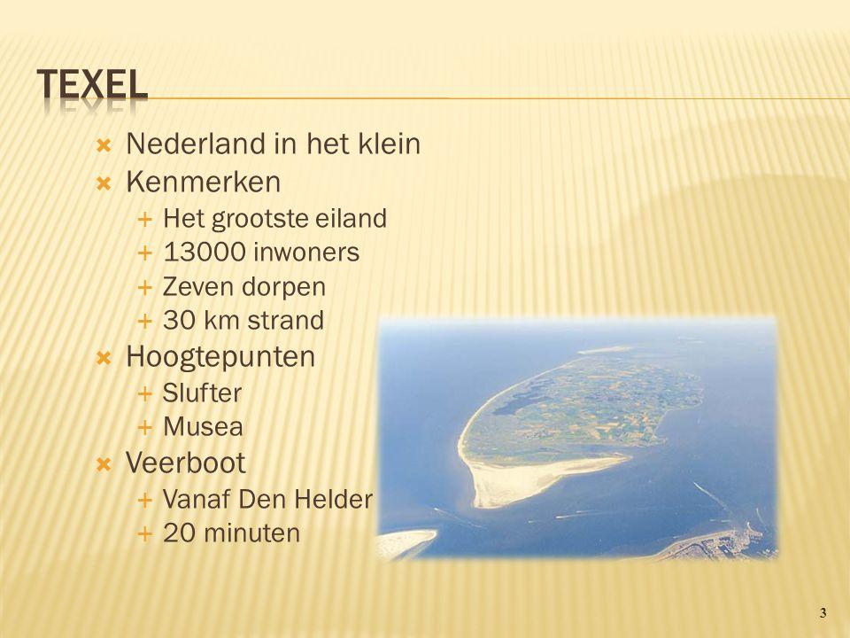  Nederland in het klein  Kenmerken  Het grootste eiland  13000 inwoners  Zeven dorpen  30 km strand  Hoogtepunten  Slufter  Musea  Veerboot  Vanaf Den Helder  20 minuten 3