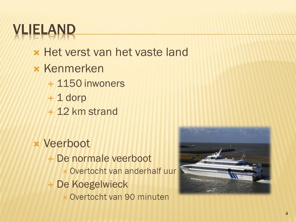 Het verst van het vaste land  Kenmerken  1150 inwoners  1 dorp  12 km strand  Veerboot  De normale veerboot  Overtocht van anderhalf uur  De Koegelwieck  Overtocht van 90 minuten 4