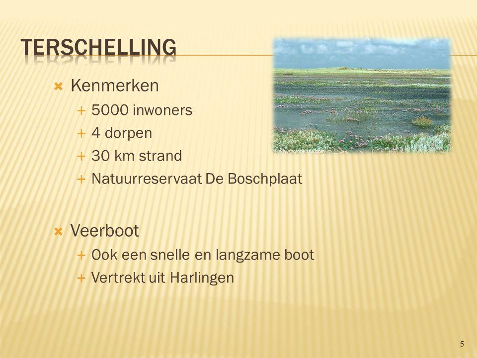  Kenmerken  5000 inwoners  4 dorpen  30 km strand  Natuurreservaat De Boschplaat  Veerboot  Ook een snelle en langzame boot  Vertrekt uit Harlingen 5
