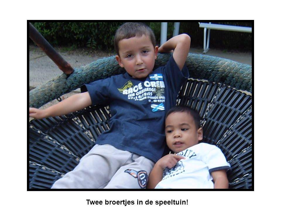 Twee broertjes in de speeltuin!