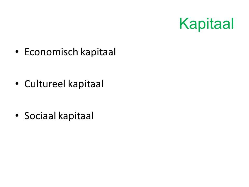 Kapitaal Economisch kapitaal = wat je kan uitgeven Cultureel kapitaal = opleiding, kennis, culturele ervaring, taal,… Sociaal kapitaal = sociale netwerken