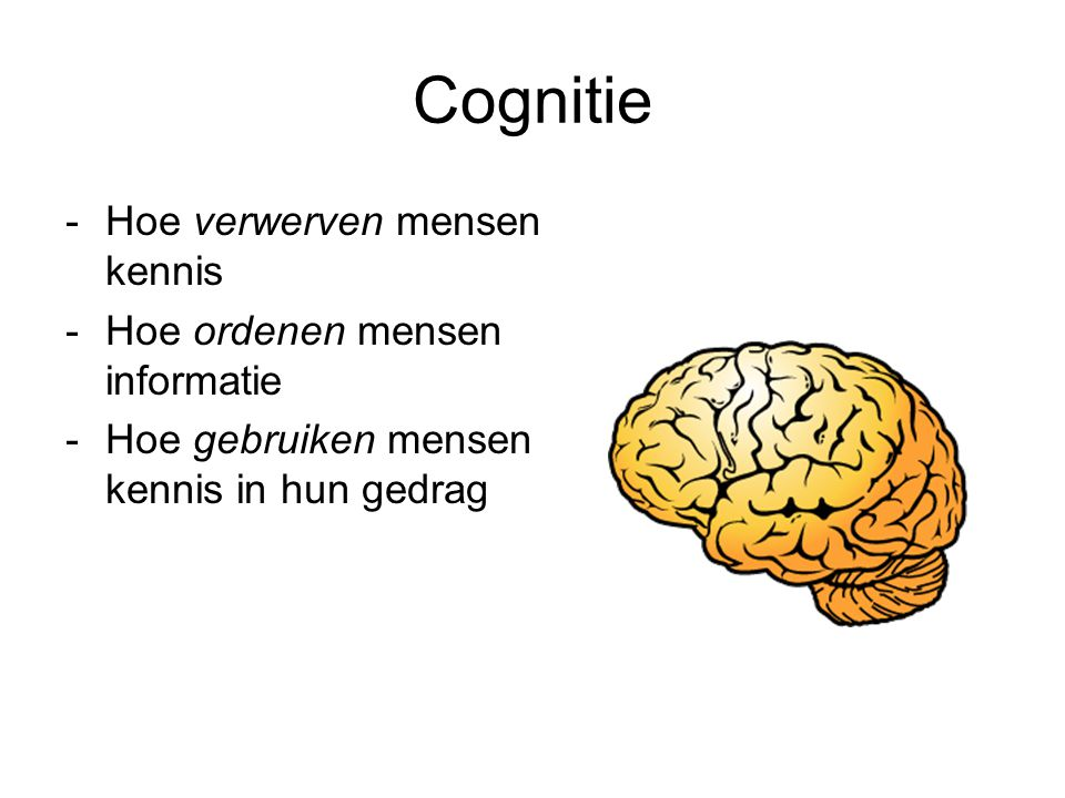 Cognitie -Hoe verwerven mensen kennis -Hoe ordenen mensen informatie -Hoe gebruiken mensen kennis in hun gedrag