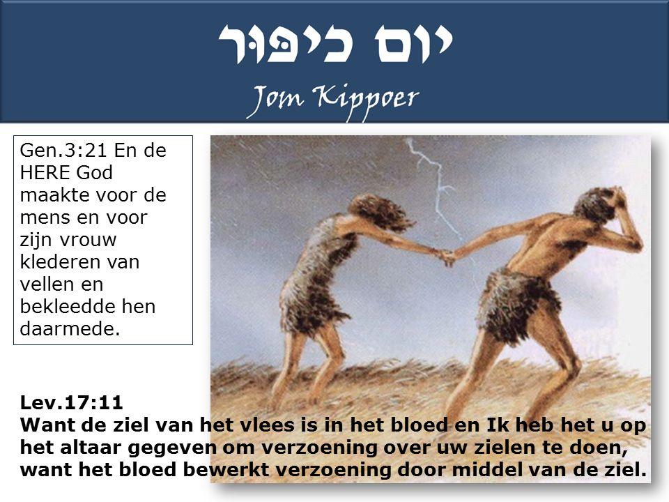 Gen.3:21 En de HERE God maakte voor de mens en voor zijn vrouw klederen van vellen en bekleedde hen daarmede.