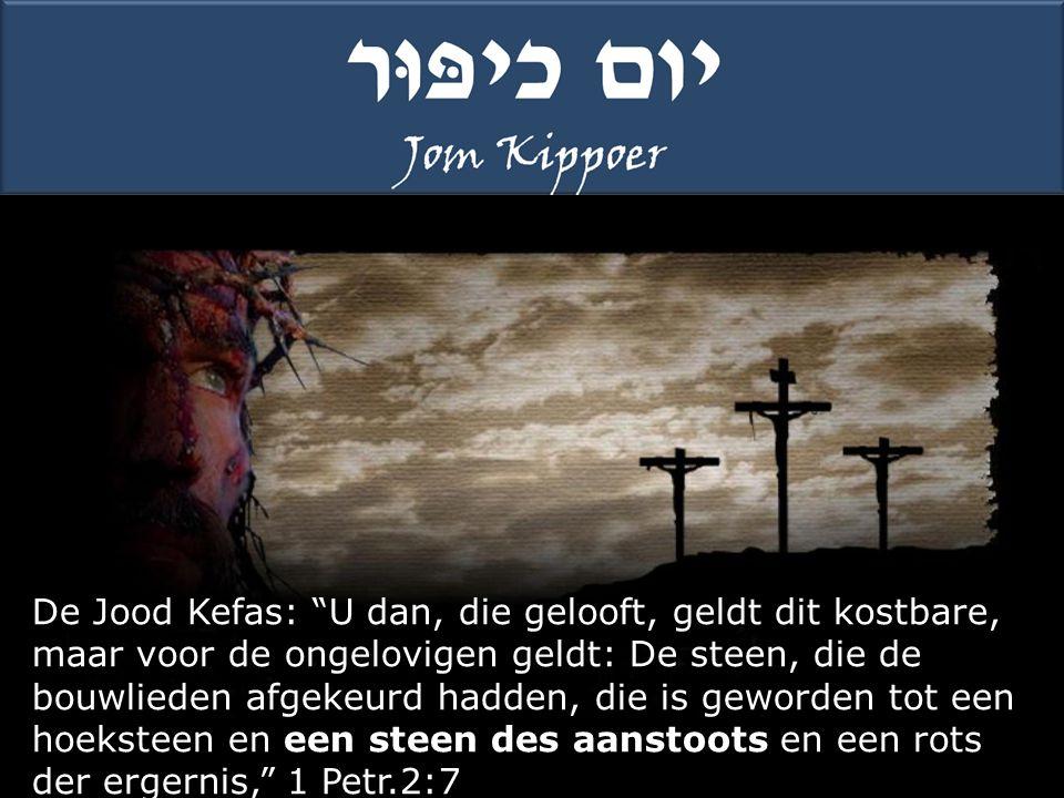 De Jood Kefas: U dan, die gelooft, geldt dit kostbare, maar voor de ongelovigen geldt: De steen, die de bouwlieden afgekeurd hadden, die is geworden tot een hoeksteen en een steen des aanstoots en een rots der ergernis, 1 Petr.2:7