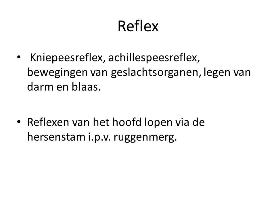 Reflex Kniepeesreflex, achillespeesreflex, bewegingen van geslachtsorganen, legen van darm en blaas. Reflexen van het hoofd lopen via de hersenstam i.