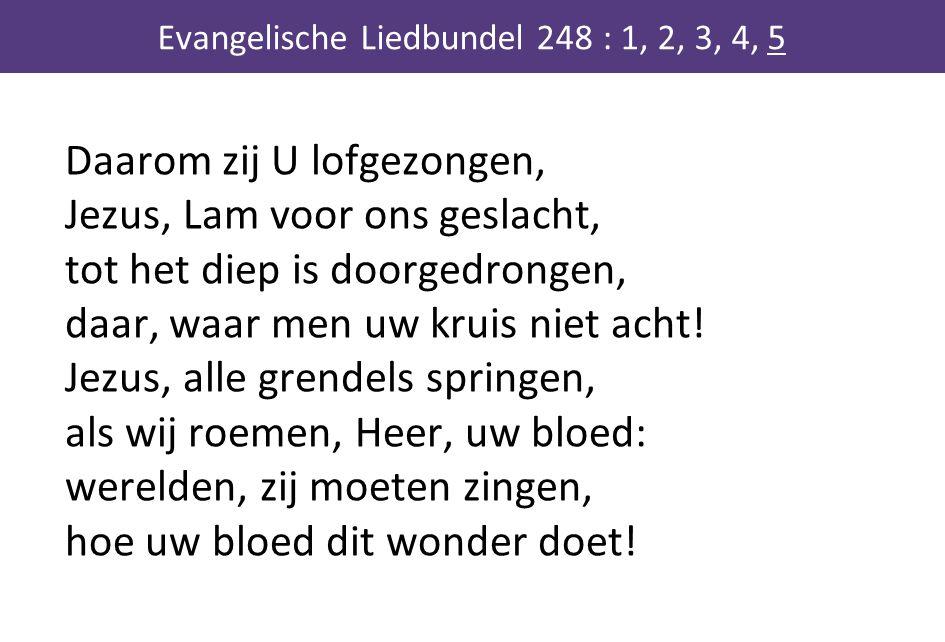 Daarom zij U lofgezongen, Jezus, Lam voor ons geslacht, tot het diep is doorgedrongen, daar, waar men uw kruis niet acht! Jezus, alle grendels springe
