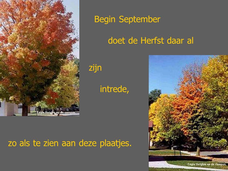 Begin September doet de Herfst daar al zijn intrede, zo als te zien aan deze plaatjes.