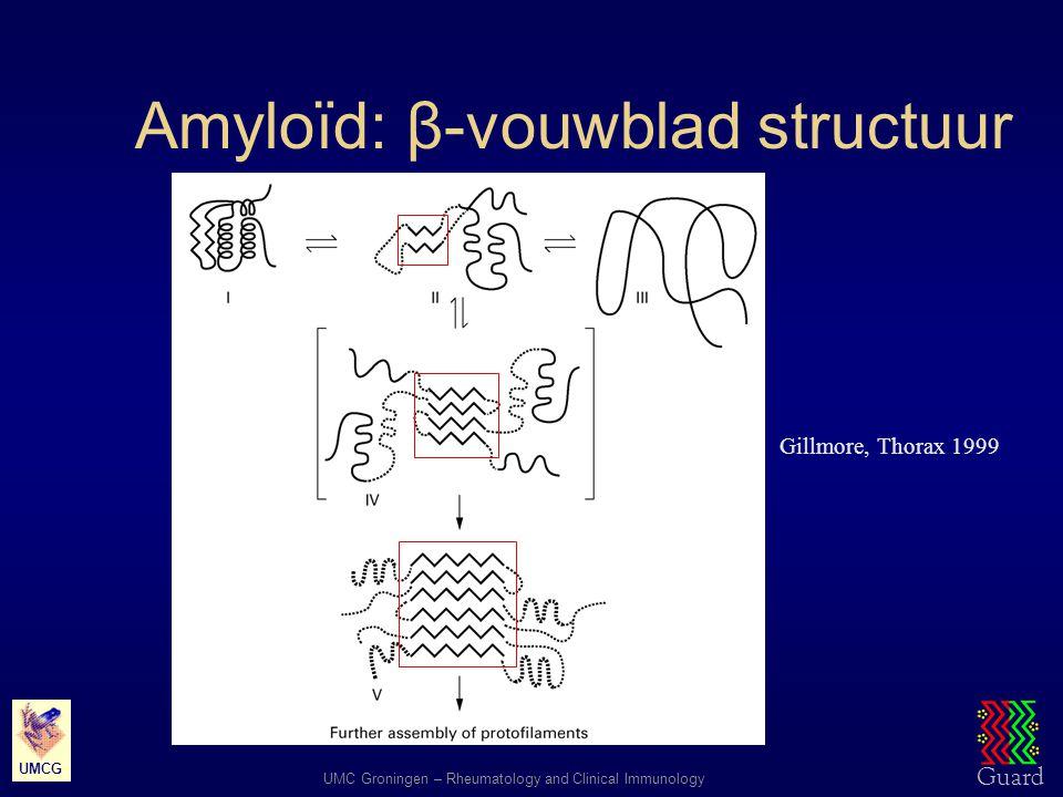 Guard UMC Groningen – Rheumatology and Clinical Immunology UMCG Amyloïd: β-vouwblad structuur Gillmore, Thorax 1999