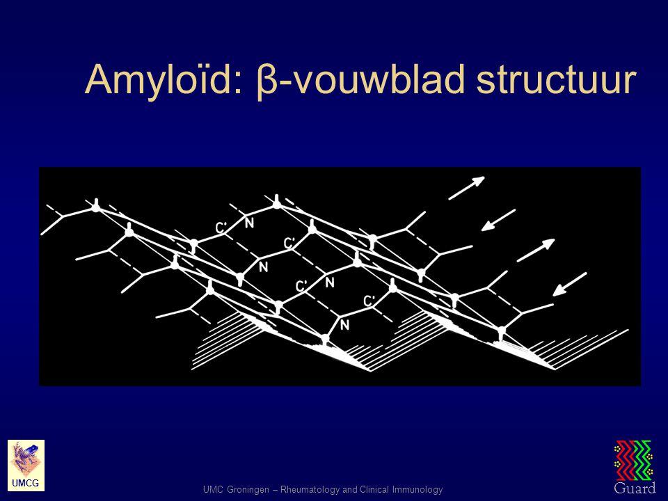 Guard UMC Groningen – Rheumatology and Clinical Immunology UMCG Amyloïd: β-vouwblad structuur