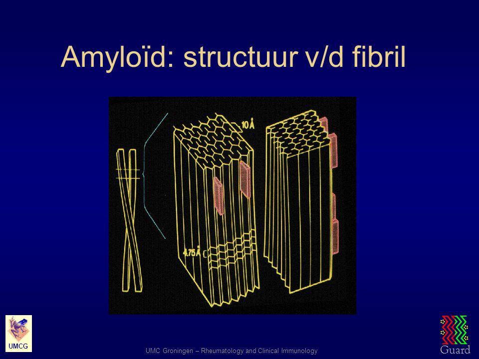 Guard UMC Groningen – Rheumatology and Clinical Immunology UMCG Amyloïd: fibrillaire structuur bij elektronenmicroscopie Stijve, niet-vertakkende fibrillen Onbepaalde lengte Gedraaide polypeptide ketens Amyloïd P-component Pentagonaal eiwit Ca-afhankelijke binding 1 : 50.000 1 : 200.000