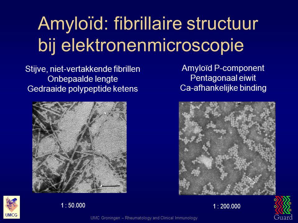 Guard UMC Groningen – Rheumatology and Clinical Immunology UMCG Amyloïd: fibrillaire structuur bij elektronenmicroscopie Stijve, niet-vertakkende fibr