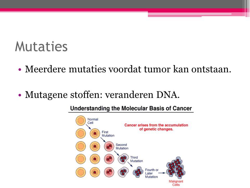 Mutaties Meerdere mutaties voordat tumor kan ontstaan. Mutagene stoffen: veranderen DNA.