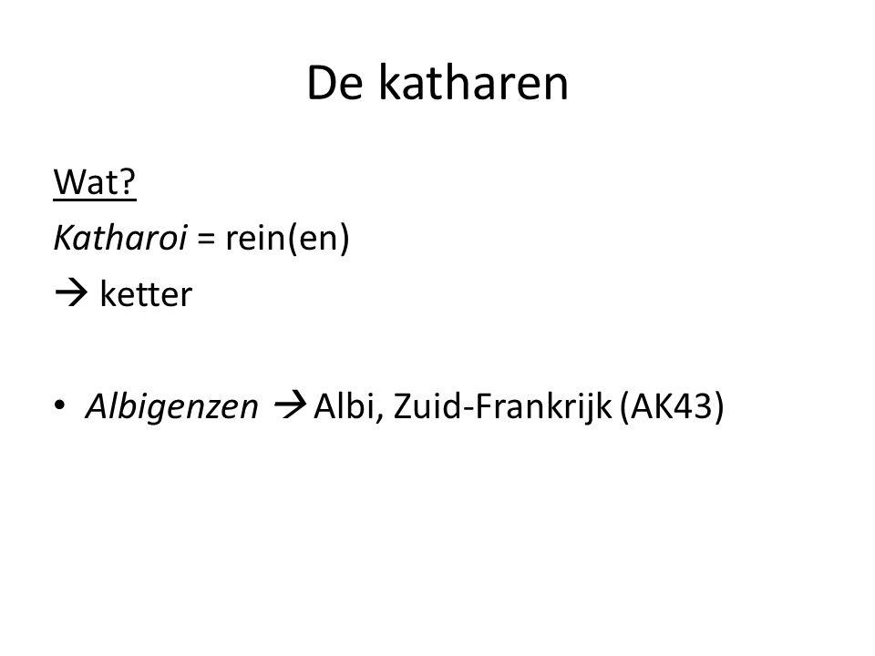 De katharen Wat? Katharoi = rein(en)  ketter Albigenzen  Albi, Zuid-Frankrijk (AK43)