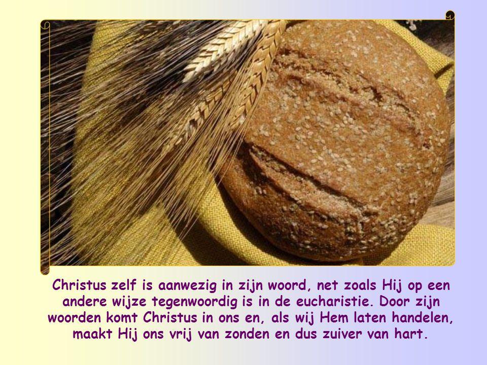 Het zijn niet de rituele oefeningen die ons van binnen zuiveren, maar zijn woord. Het woord van Jezus is niet zoals de woorden van mensen.