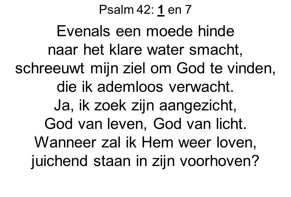 Psalm 42: 1 en 7 Evenals een moede hinde naar het klare water smacht, schreeuwt mijn ziel om God te vinden, die ik ademloos verwacht. Ja, ik zoek zijn
