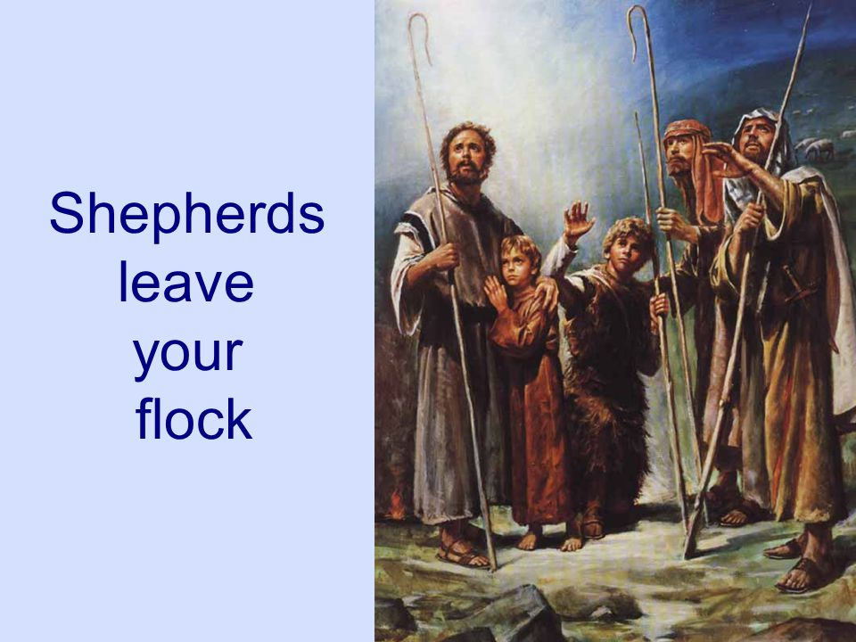 Shepherds leave your flock