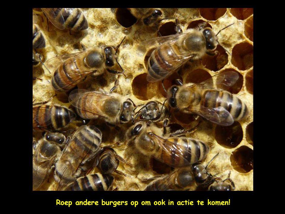Benader bedrijven/overheid organisaties/politieke partijen en vraag of ze bijen willen beschermen door bij-vriendelijk te handelen d.w.z.