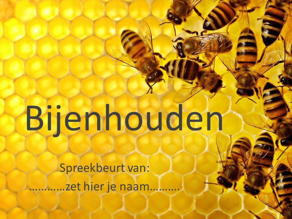Bijenhouden Spreekbeurt van: …………zet hier je naam……….