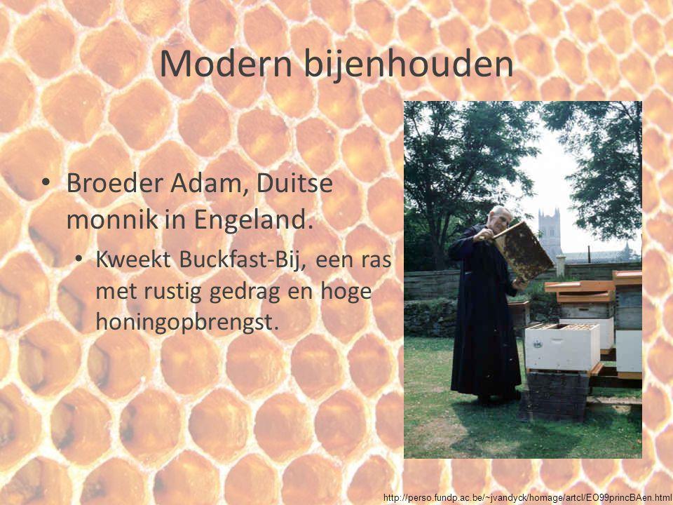 Modern bijenhouden Broeder Adam, Duitse monnik in Engeland. Kweekt Buckfast-Bij, een ras met rustig gedrag en hoge honingopbrengst. http://perso.fundp