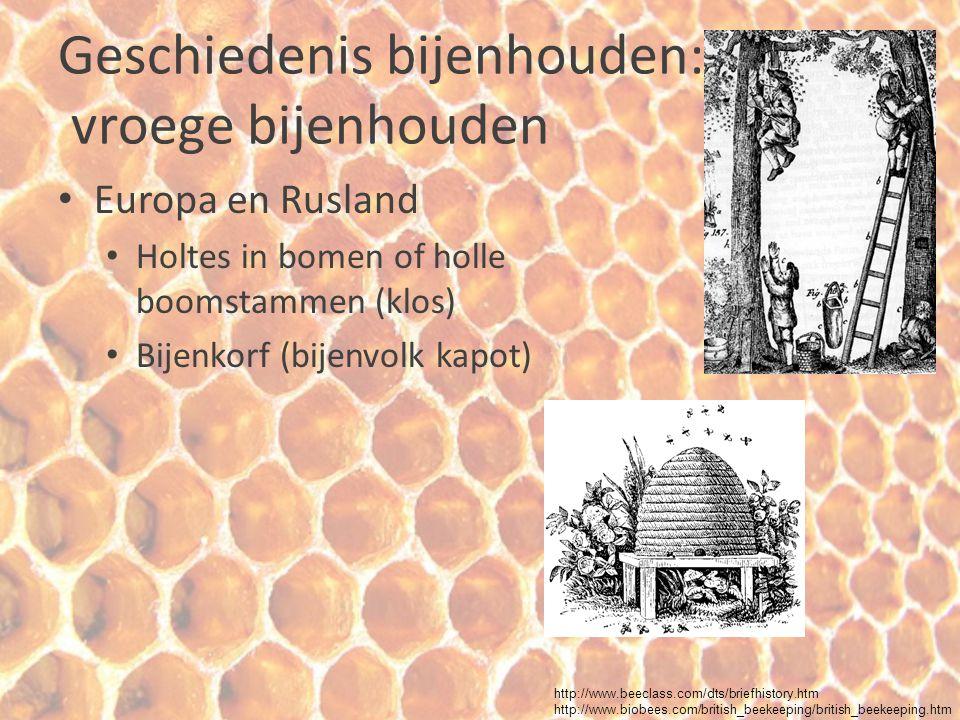 Geschiedenis bijenhouden: vroege bijenhouden Europa en Rusland Holtes in bomen of holle boomstammen (klos) Bijenkorf (bijenvolk kapot) http://www.beec
