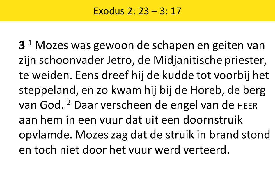 Exodus 2: 23 – 3: 17 3 1 Mozes was gewoon de schapen en geiten van zijn schoonvader Jetro, de Midjanitische priester, te weiden. Eens dreef hij de kud