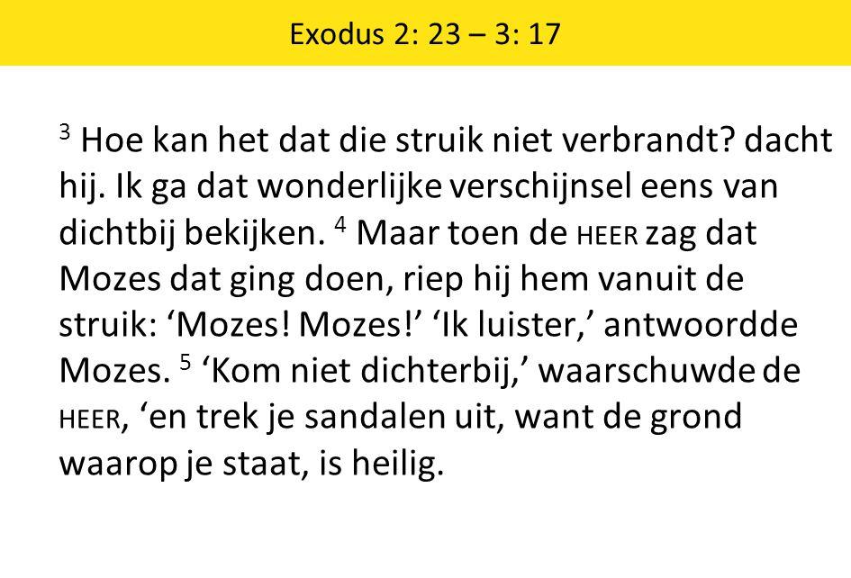 Exodus 2: 23 – 3: 17 3 Hoe kan het dat die struik niet verbrandt? dacht hij. Ik ga dat wonderlijke verschijnsel eens van dichtbij bekijken. 4 Maar toe
