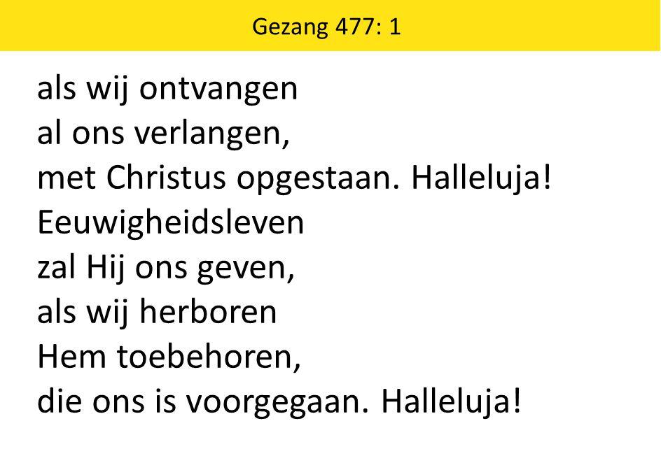 Gezang 360: 2, 3 2 Sterk ons wankelend vertrouwen, geef ons zelf wat Gij geboodt: dat wij met oprecht berouwen enkel rusten in uw dood; ja, vervul ons met uw krachten, opdat wij uw wet betrachten, zegen zo uw sacrament, dat ons hart U steeds meer kent.