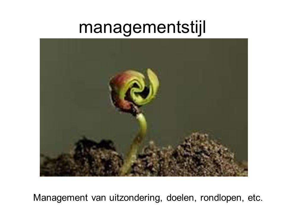 Managementstijl