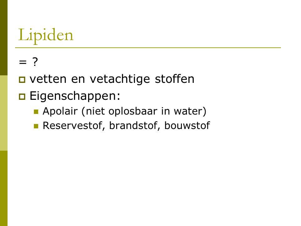 Lipiden = .
