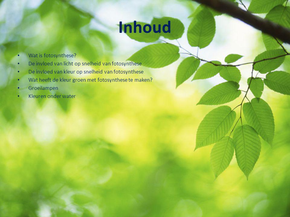 Inhoud Wat is fotosynthese? De invloed van licht op snelheid van fotosynthese De invloed van kleur op snelheid van fotosynthese Wat heeft de kleur gro