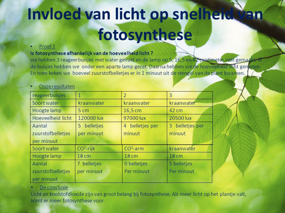 Invloed van licht op snelheid van fotosynthese Proef 1 Is fotosynthese afhankelijk van de hoeveelheid licht ? we hebben 3 reageerbuisjes met water gev