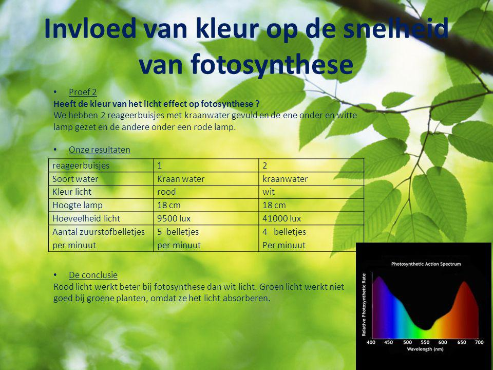 Invloed van kleur op de snelheid van fotosynthese Proef 2 Heeft de kleur van het licht effect op fotosynthese ? We hebben 2 reageerbuisjes met kraanwa