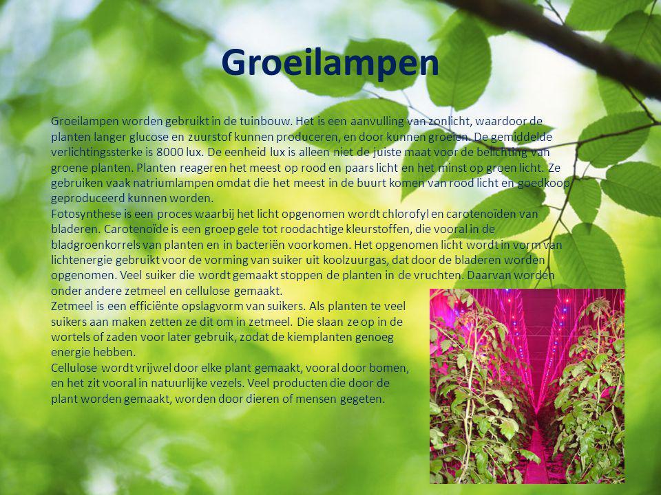 Groeilampen Groeilampen worden gebruikt in de tuinbouw. Het is een aanvulling van zonlicht, waardoor de planten langer glucose en zuurstof kunnen prod