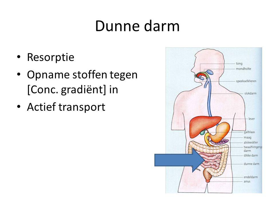 Dunne darm Resorptie Opname stoffen tegen [Conc. gradiënt] in Actief transport
