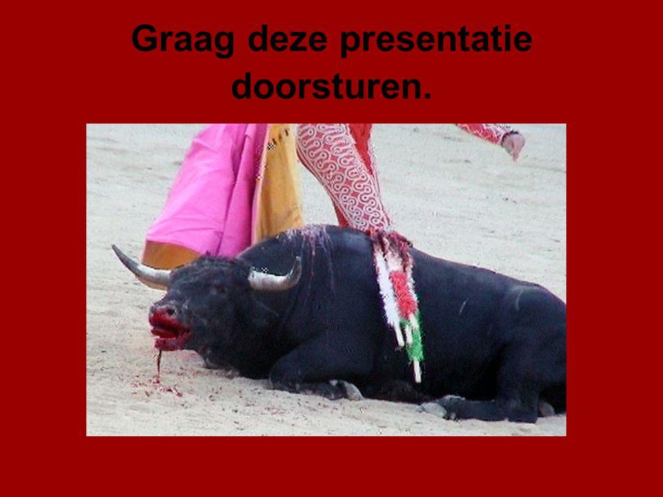 Met het doorsturen van deze beelden hopen we dat steeds meer mensen bewust worden van de wreedheid van 'stierenfeesten' Bedenk dat iedere e-mail die u