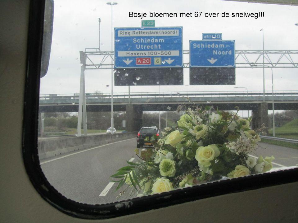 Bosje bloemen met 67 over de snelweg!!!