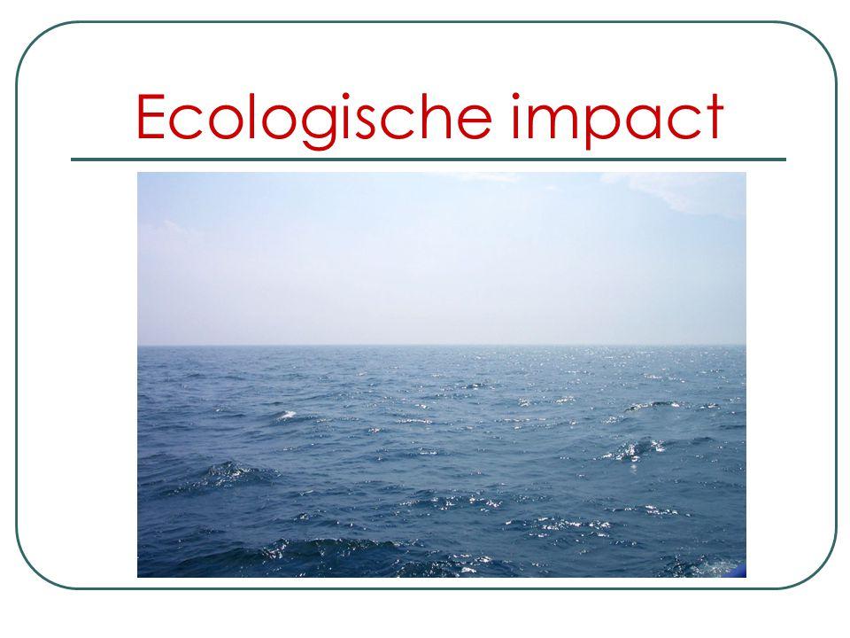 Economische impact Ook niet onbelangrijk is de tewerkstelling in het scheepswezen die hiermee werd gecreërd. Om dan nog te zwijgen van de investeringe
