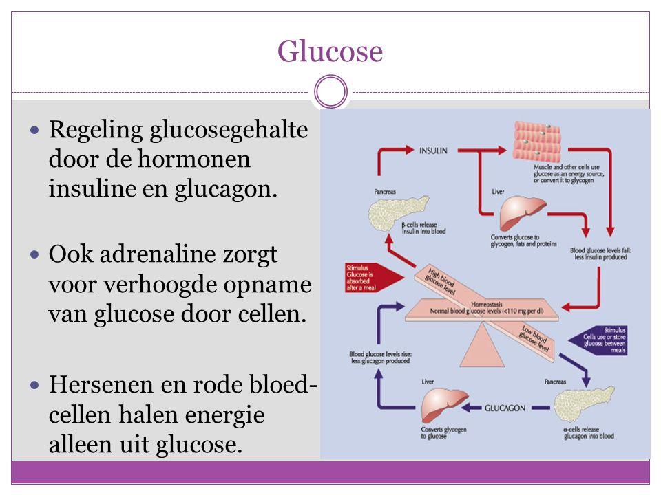 Glucose Regeling glucosegehalte door de hormonen insuline en glucagon.