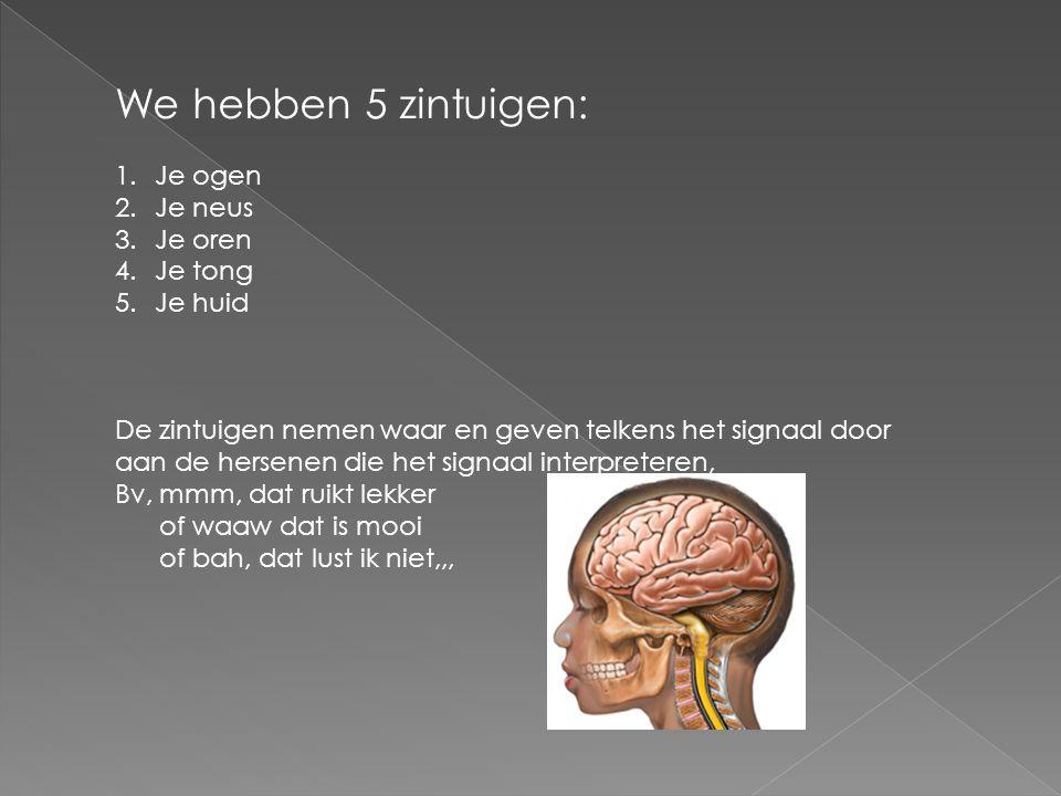We hebben 5 zintuigen: 1.Je ogen 2.Je neus 3.Je oren 4.Je tong 5.Je huid De zintuigen nemen waar en geven telkens het signaal door aan de hersenen die